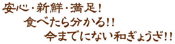 生餃子 安心・新鮮・満足!食べたら分かる!!今までにない和ぎょうざ!!