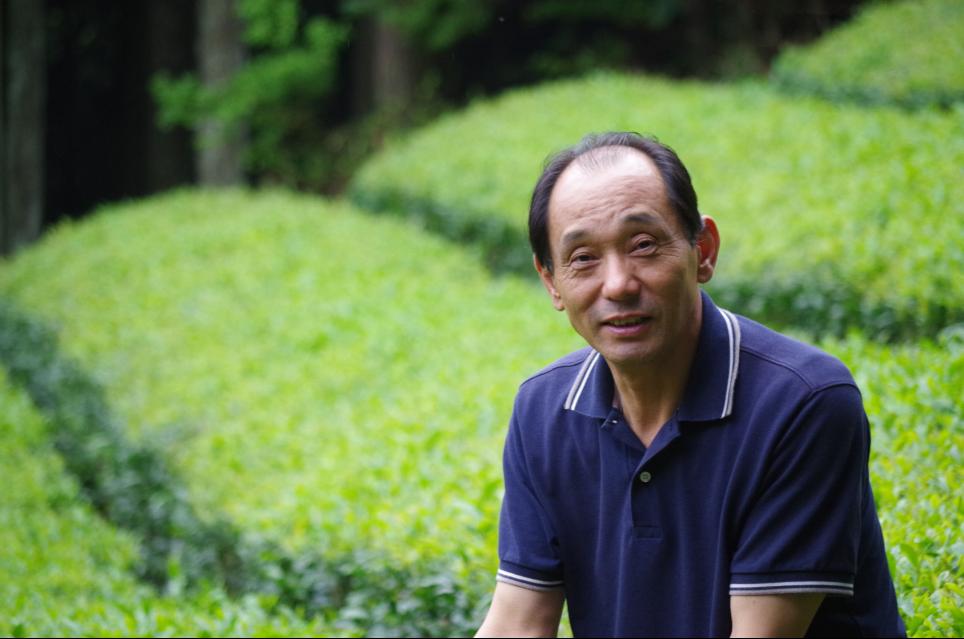 近江 朝宮茶 「かたぎ古香園」