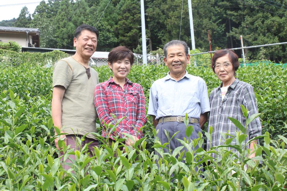 静岡 川根茶 「つちや農園」