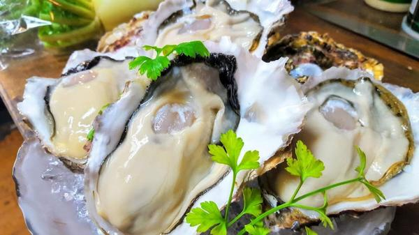 新鮮な『生牡蠣』のご用意もございます!