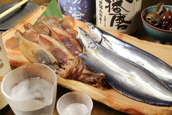 新鮮な旬魚